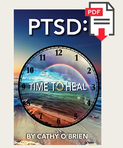 PTSD: Time to Heal eBook Sample